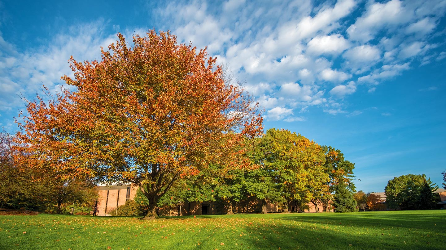 Beautiful fall colors under blue skies, from Calvin's campus.